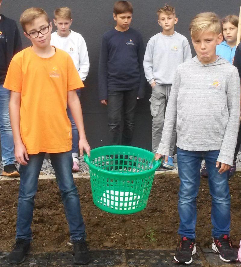 Unbekannte stehlen Kartoffelernte der Garten-AG am Raiffeisen-Campus