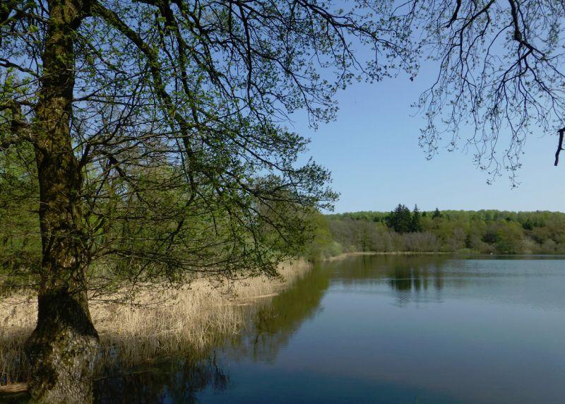 Naturlandschaft Westerwald im Fokus des NHV
