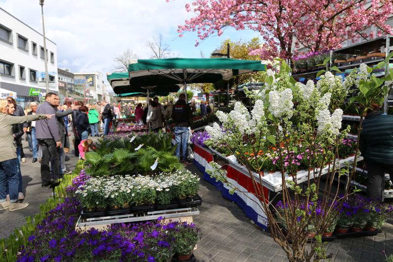 Beim Gartenmarkt Trägt Die Neuwieder Innenstadt Grün Nr Kurierde