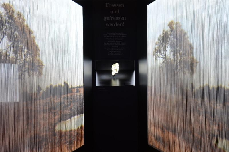 Freier Museumseintritt in Monrepos