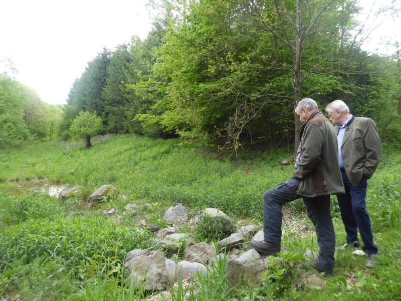 Wald schützt auch Grundwasser einer Mülldeponie