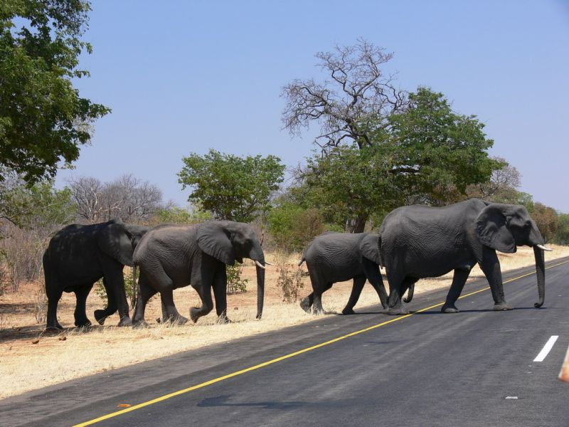 Namibia, das Land der Gegensätze