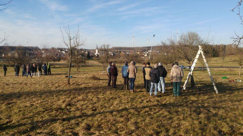 Naturschutzverein Hahn am See: Obstbaumschnittkurs