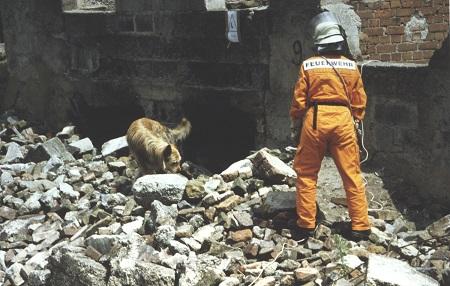 Feuerwehr Hamm sucht Hundeführer-Nachwuchs