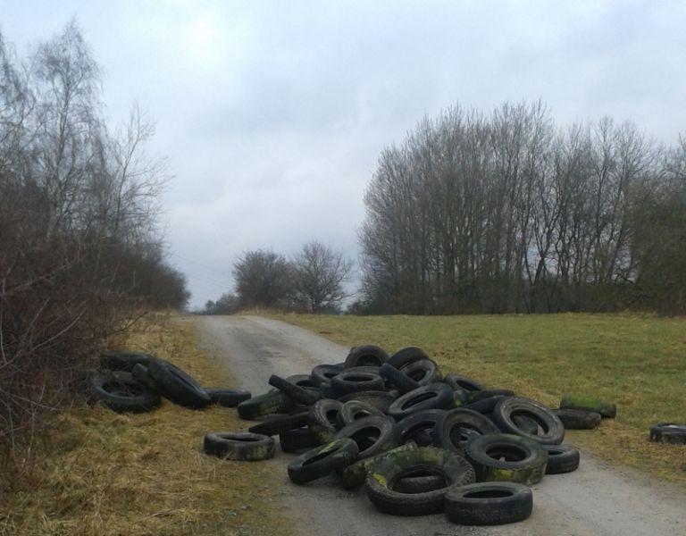 Große Mengen Altreifen in der Landschaft entsorgt