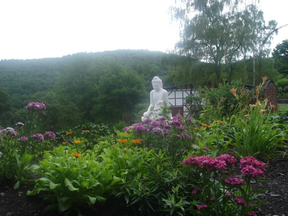 Kein Vesakh-Fest im Kloster Hassel