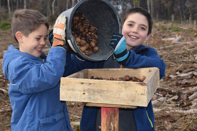 Jugendliche aus dem Puderbacher Land helfen dem Wald