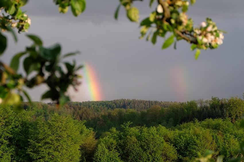 regenbogen symbol kirche