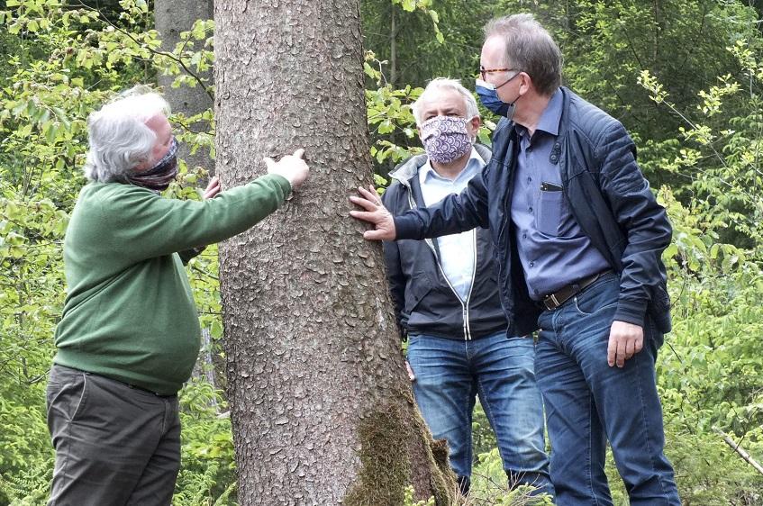 Rüddel: Waldbegehung offenbart dramatische Schäden im Kreis