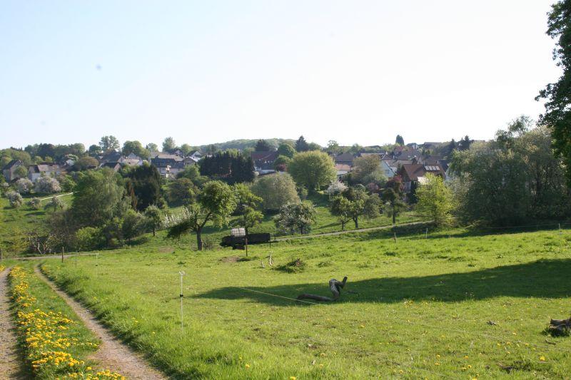 Gemeinsame Sitzung bezüglich Kindertagesstätte Sessenbach