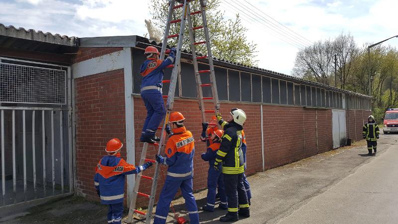 Der Steinebacher Feuerwehrnachwuchs empfand den Alltag einer Berufsfeuerwehr nach. Fotos: Feuerwehr Steinebach