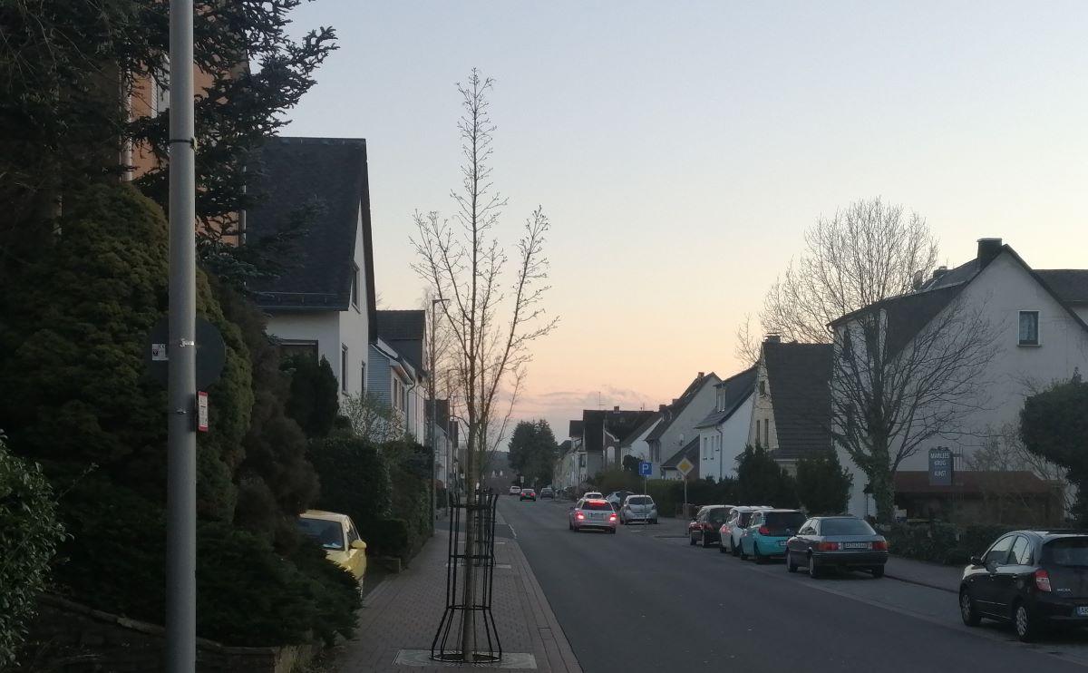 Totschlag in Altenkirchen: 81-Jährige mit Hammer und Messer getötet?