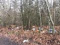 "Aktion ""Saubere Landschaft"": Landrat gibt Startschuss am 4. April in Freirachdorf"