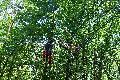 Paraglider landet in Roßbach im Baum