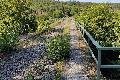 Bahn saniert Brückenbauwerk Nistertal