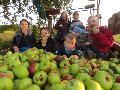 Des Wällers liebstes Obst - zur Geschichte des Apfels im Westerwald