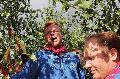 Hachenburger Kirmes: Ein Volksfest f�r Hachenburg ... und die ganze Region