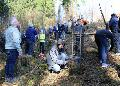 300 Douglasien im Kirchenwald gepflanzt