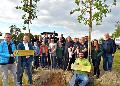 Baumspenden: Sch�tzenbruderschaft Birken-Honigsessen pflanzt zwei Eichen