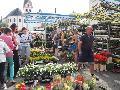 Bendorf blüht auf: Bauern- und Gartenmarkt kommt