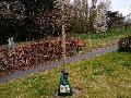 Bewässerungsbeutel für Bäume in Windhagen