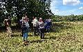 Ein Sommer mit Erfolgen und Problemen auf Naturschutzflächen