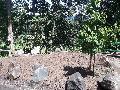 Ein nachhaltiger Außenbereich für das Schützenhaus Birken-Honigsessen