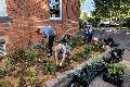 Duft- und Naschgarten in Bendorf angelegt