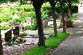 Diebstahlserie auf Friedhof – Polizei bittet um Hinweise