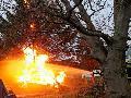 Niederhövels: Feuer in einem Holzstapel setzt Baum in Brand