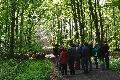 Woldert: Zukunft des Waldes im Zeichen des Klimawandels