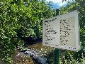 Wandern im Westerwald: Auf wildromantischen Pfaden durch die Kroppacher Schweiz