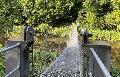Geführte Wanderung über die Seilhängebrücke zum Gipfelkreuz mit Weitblick