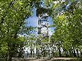 Ottoturm-Rundwanderweg in Kirchen: Hoch hinaus für tolle Ausblicke