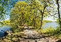 "Westerwaldsteig Erlebnisschleife: Rundtour ""Romantische Seenplatte"" in Dreifelden"