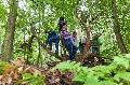 Spielplatz Wald: Kinder können die Natur entdecken