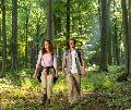 Wanderung ins Naturwaldreservat