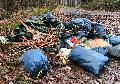 Wieder einmal Müll im Prachter Wald entsorgt