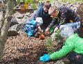Kinder pflanzen Kräuter für Mensch und Tier