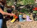 Coronazeit gemeinsam bunter machen