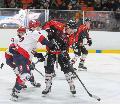 Derby lockt an den Heckenweg: Rockets empfangen Bären Neuwied