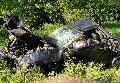 27-Jähriger stirbt bei Unfall auf der B 256 in Horhausen