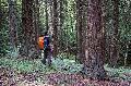 Waldbaden im Wiedtal wieder möglich
