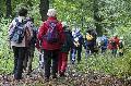 WWV Bad Marienberg wandert auf der Iserbachschleife