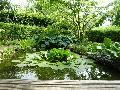 Tag der offenen Gartentür am 27. Juni
