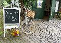 Bauerngarten in Alsdorf öffnete seine Türen unter dem Motto: Musikalische Blütenträume