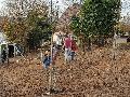 Obstbäume in Caan gepflanzt