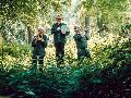 Stöffel-Park: Jazz we can - Das Dschungelbuch