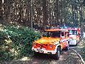 Waldbrand im Bereich Schiefer in Neustadt