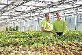 Neueröffnung bei Kramer Garten & Ambiente in Buchholz